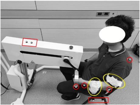 Preliminary Validation of a Device for the Upper and Lower Limb Robotic Rehabilitation